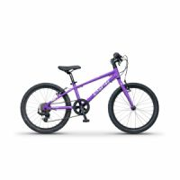 "Apache Kids 20"" Yuma Purple"